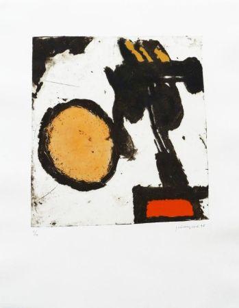Stich Guinovart - Sèpia i taronja