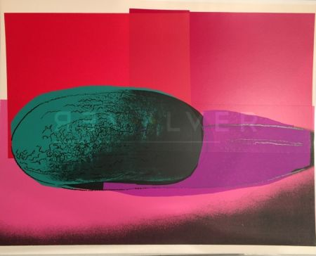 Siebdruck Warhol - Space Fruit: Watermelon Fs Ii.199