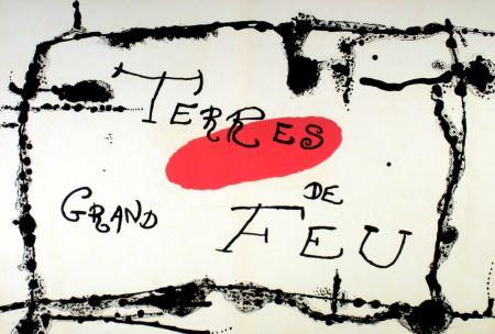 Lithographie Miró - Terres de grand feu