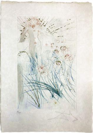 Kaltnadelradierung Dali - The beloved feeds between the lilies