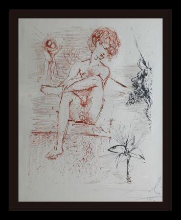 Stich Dali - The Mythology Narcissus