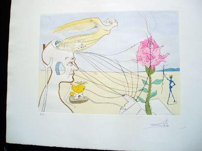 Stich Dali - The Rose