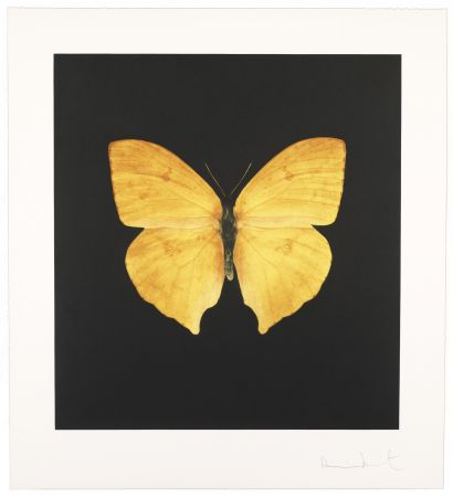 Stich Hirst - The Souls On Jacob's Ladder Take Their Flight I