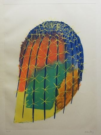 Radierung Und Aquatinta Ray - Transfiguration d'un cactus