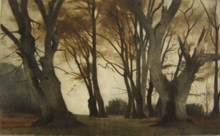 Mezzotinto Ilsted - Trees in Elmelunden