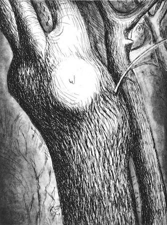 Radierung Und Aquatinta Moore - Trees VI dead ash