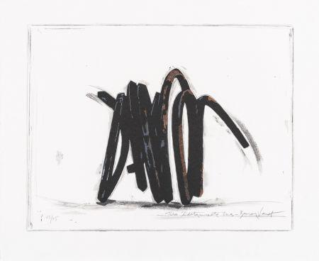 Siebdruck Venet - Two indeterminate lines