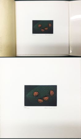 Mezzotinto Hamaguchi - Two Pairs (Ladybirds). signed. with the original book (1976)