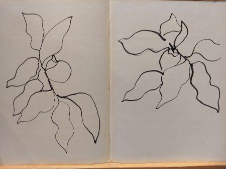 Illustriertes Buch Matisse - Vence