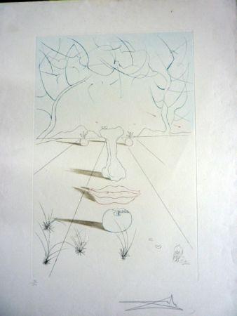 Stich Dali - Visage Surrealiste From