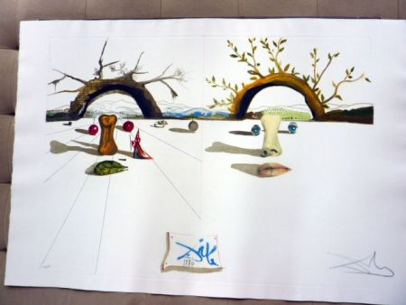 Stich Dali - Winter And Summer
