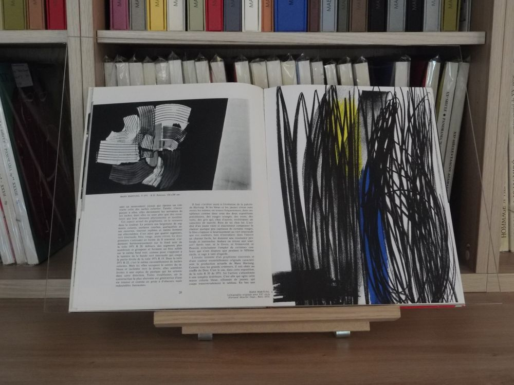 Illustriertes Buch Hartung - Xxe lazzaro no 43