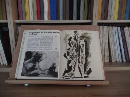 Illustriertes Buch Masson - Xxe Tanning